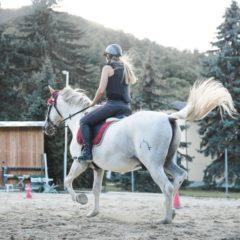 Nye Ridehjelme til rideskolen? Se med her